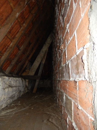 Over 290 square feet of living space was recovered from behind these walls.