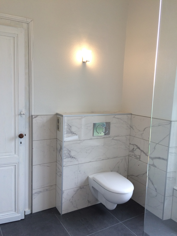Wall mounted toilets, easy to clean, marble walls