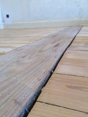 Aside from insect damage, these are the types of issues with the floor that needed resolution.