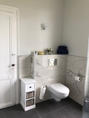 Salle de Bain 1 Toilette