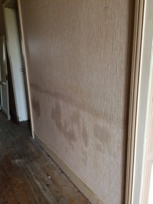 evident damage from prolonged cold, damp weather in an unheated house